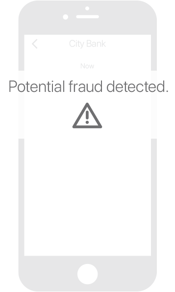 Potential Fraud Text Alerts
